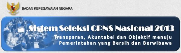 website penerimaan cpns 2014 di sscn.bkn.go.id